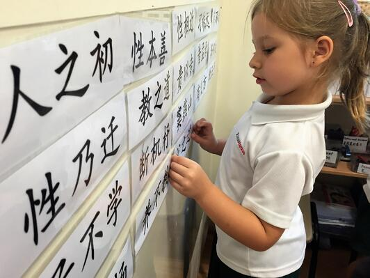 Established Chinese curriculum-1